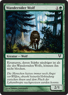 Wandernder Wolf