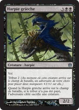 Harpie grièche