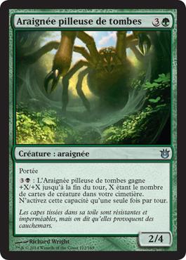 Araignée pilleuse de tombes