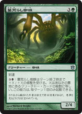 墓荒らし蜘蛛