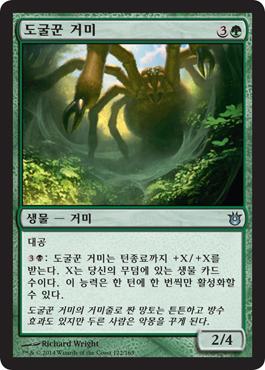 도굴꾼 거미