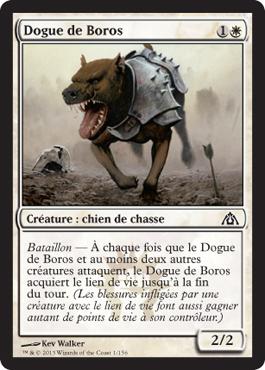 Dogue de Boros