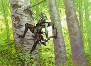 Timberwatch_Elf