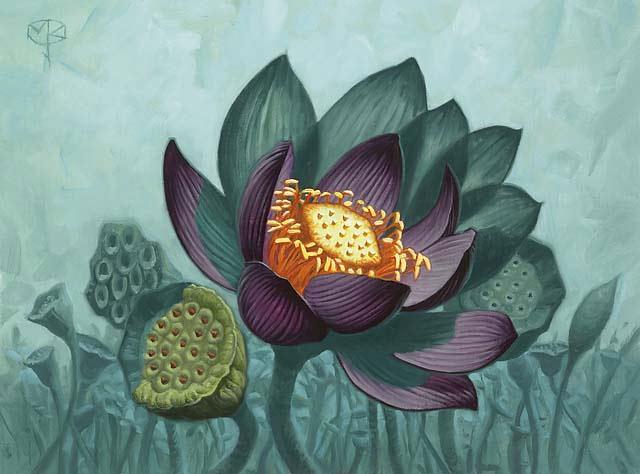Lotus_Bloom_640