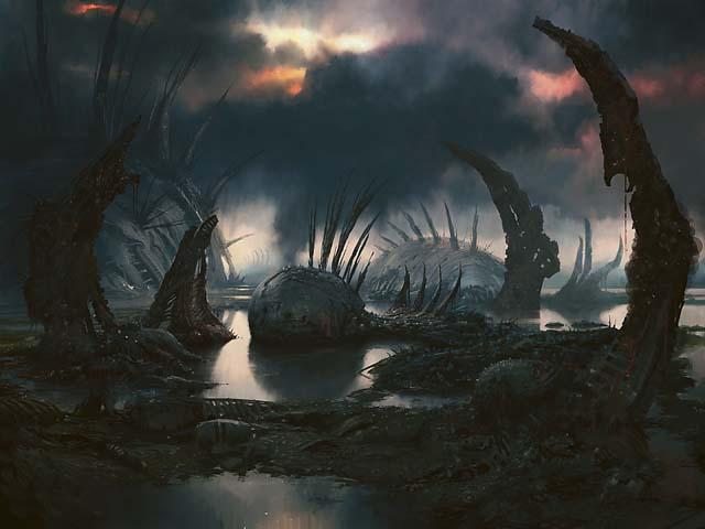 Swamp4_640