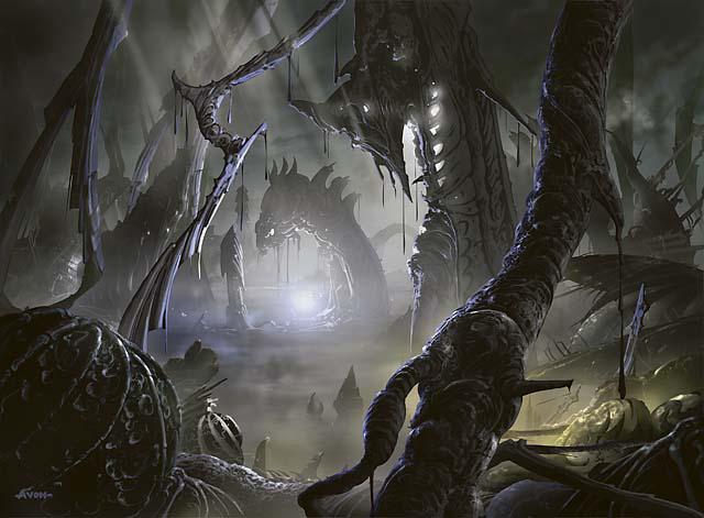 swamp1_640