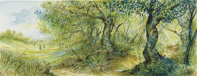Omar Rayyan's Plains and Forest