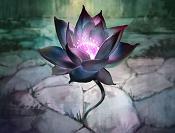Black Lotus Avatar